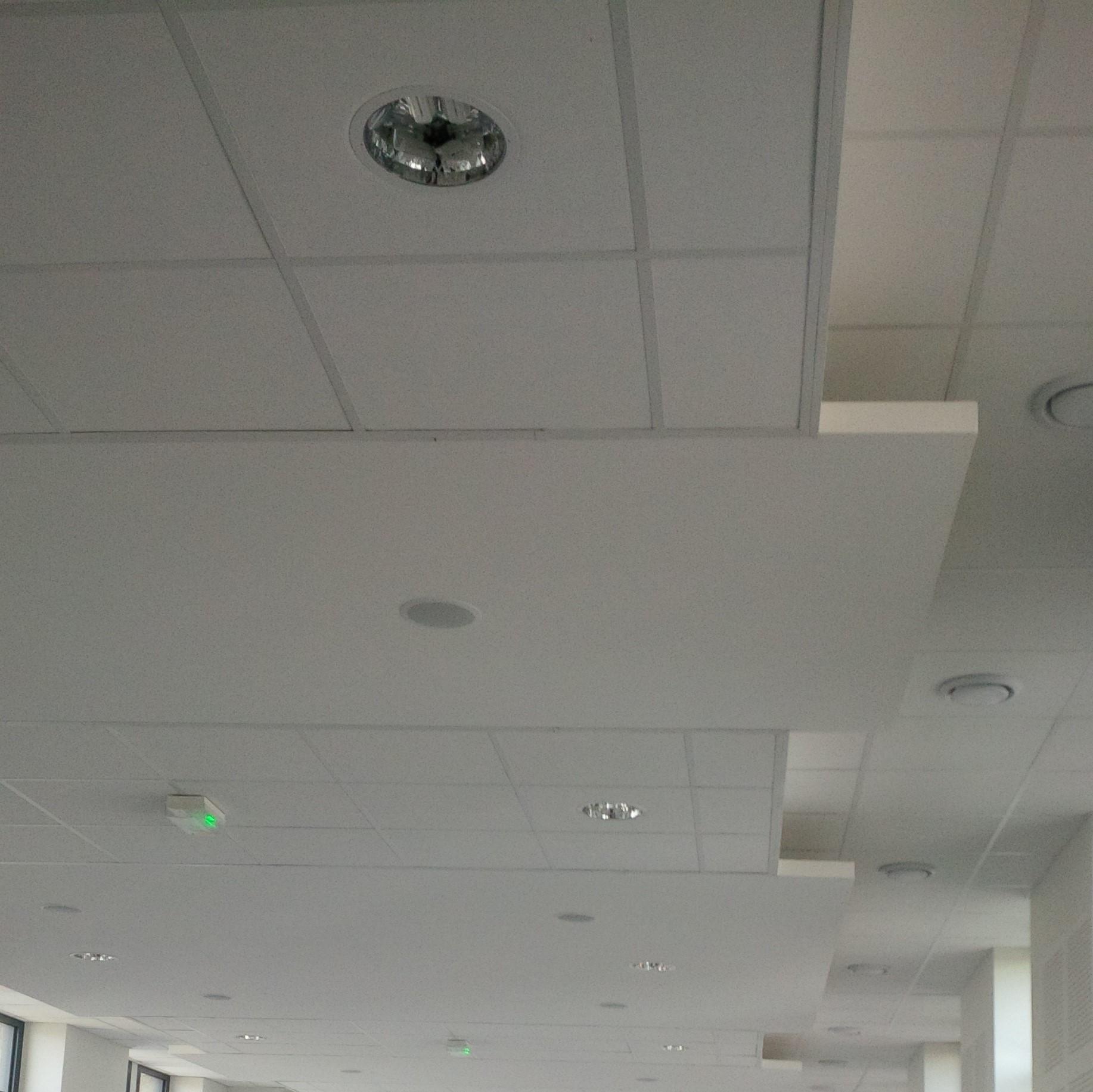 Réalisation d'un plafond en dalle avec décrochement pour mieux gérer l'acoustique de cette salle à la forêt sur sèvre BOSSARD pose les plafonds suspendus BOSSARD intervient dans le 85, le 79 et le 49 BOSSARD gère l'acoustique des pièces BOSSARD à Moncoutant