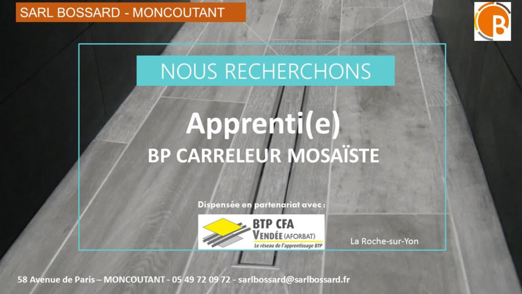 OFFRE D EMPLOI BP CARRELEUR MOSAISTE