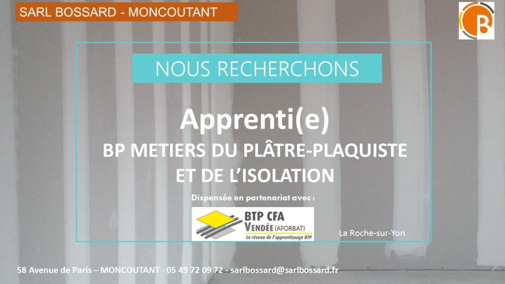 BP PLAQUISTE METIER DU PLATRE ET DE L ISOLATION A MONCOUTANT
