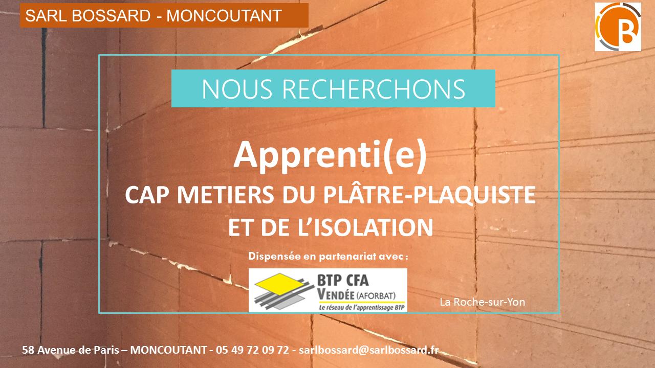 APPRENTI OFFRE D EMPLOI CAP PLATRIER PLAQUISTE METIER DE L ISOLATION